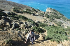 Dinos-trail-0