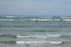 stand-up-paddle-vicentina-trail