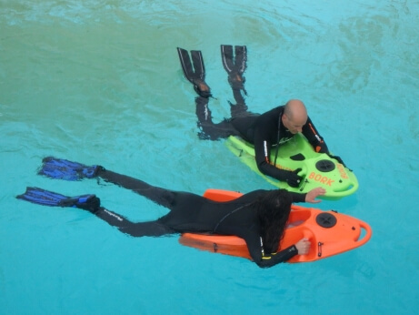 Let´s discover the underwater world on a seaview board!