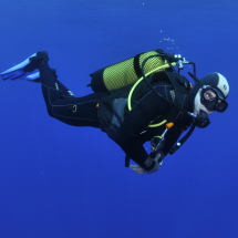 Take a diving course and enjoy the underwater world!