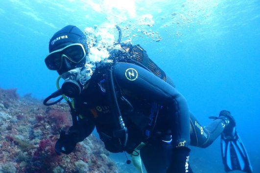 Descubre el mundo submarino, conviértete en un Open Water Diver.