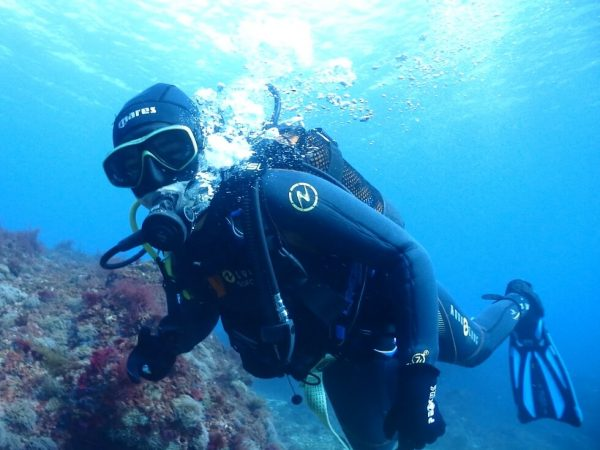 Discover the underwater world, become an Open Water Diver